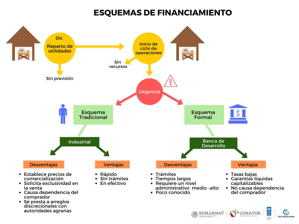 Fuente: Elaboración propia con información generada por el Proyecto de Fortalecimiento del Manejo Forestal Sustentable con Enfoque de Paisaje, 2019.
